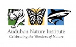 Brenda Walkenhorst,  Director of Education Projects at Audubon Zoo