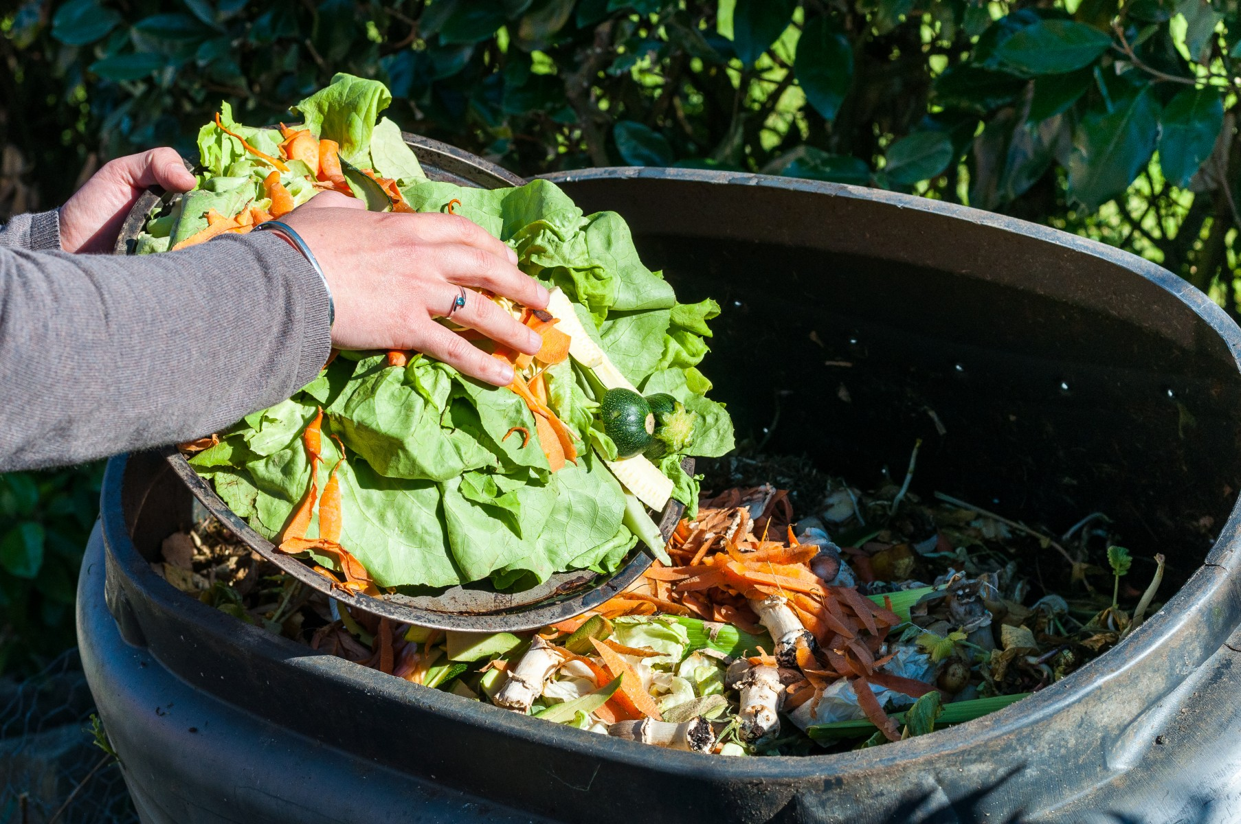 utilization of biodegradable kitchen wastes into organic This research focuses on the efficient decomposition of organic kitchen wastes using lumbricus terrestris and converting these wastes into organic fertilizer that can compete in terms of nutrient content with other organic fertilizers.
