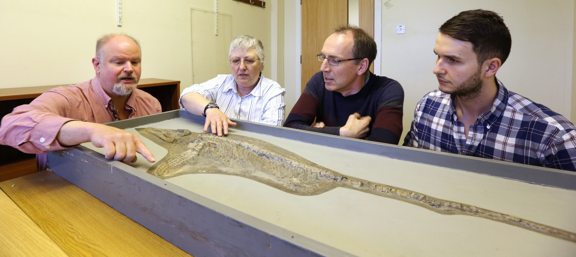 Bill Wahl, Prof. Judy Massare, Dr David Large & Dean Lomax study the new species of ichthyosaur at The University of Nottingham (c) University of Nottingham