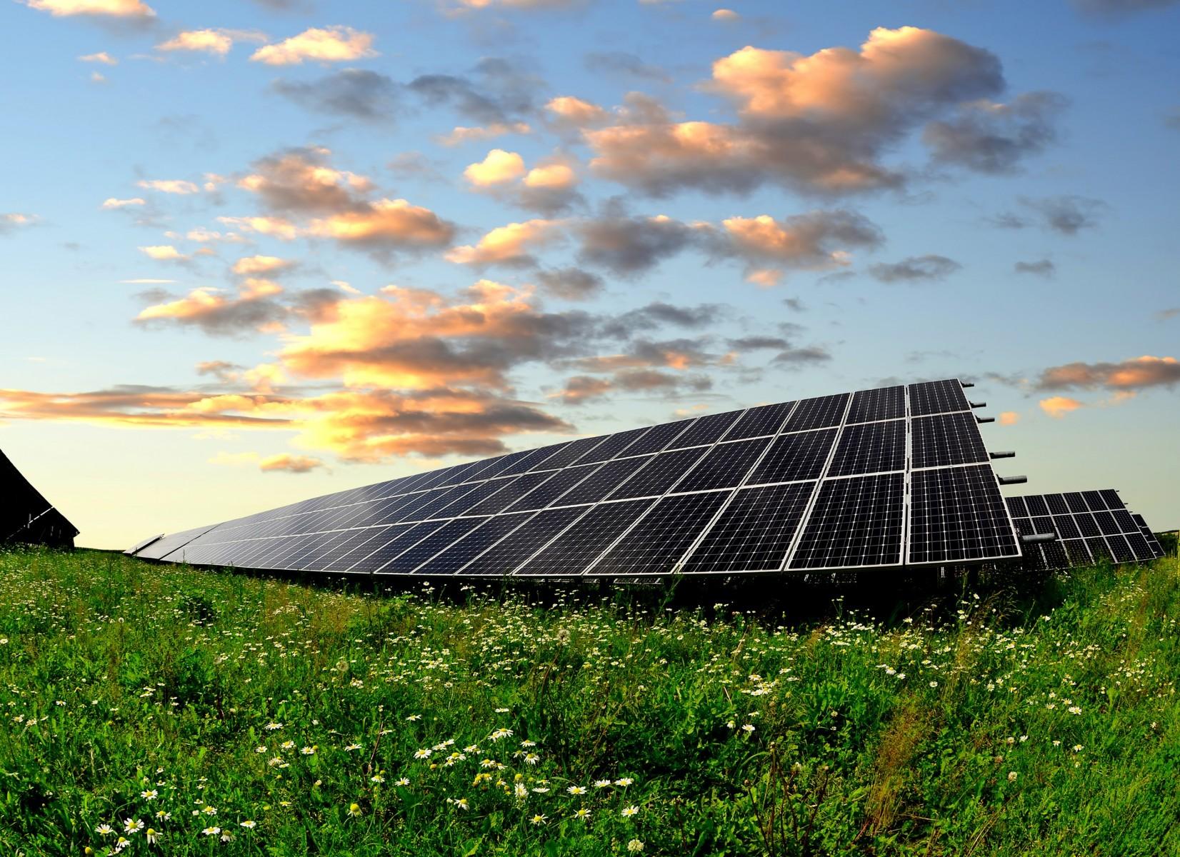 Silicon solar farm