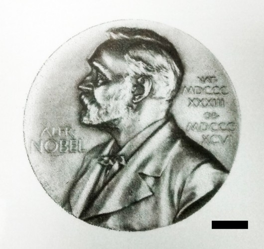 nobelprizeprintedwith2Dinks.jpg