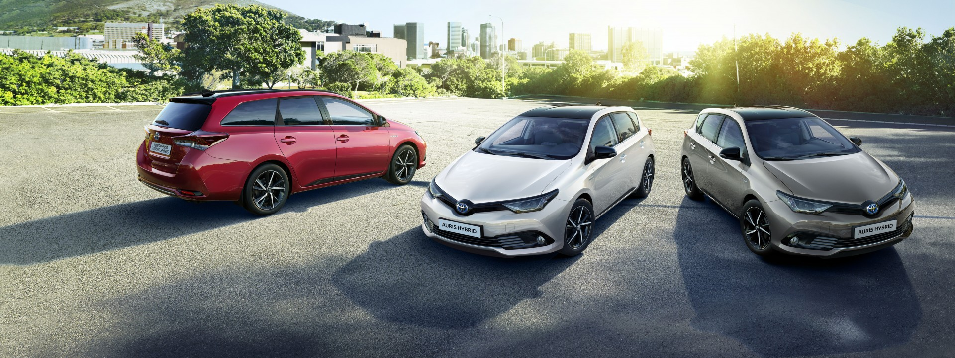 Auris Collection