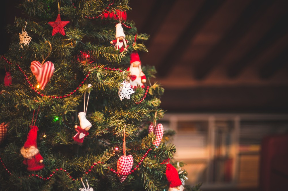 christmas tree - Recycling After Christmas: Tree Recycling Locations Across Oxfordshire