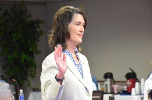Board of Regents appoint Mary Sherwood, PhD, to fill District 4 seat image