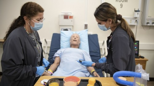 DMC Nurse Education Department offering college's first bachelor's degree, RN to BSN image