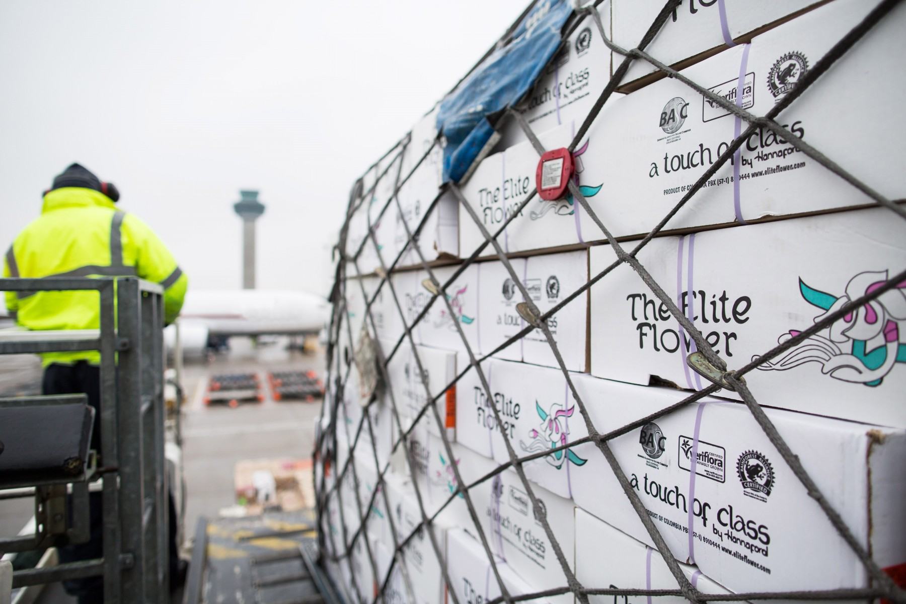 Over 1000 tonnes of flowers arrive at stansted airport for mothers day kristyandbryce Choice Image