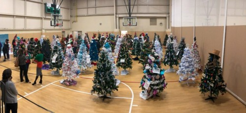 Local Families Received Decorated Trees at Annual Christmas Tree Giveaway