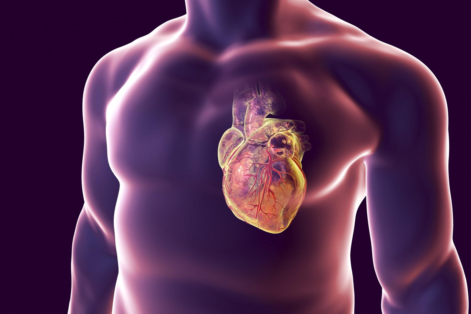 Healio Preventing Diagnosing And Treating Heart Disease In Men