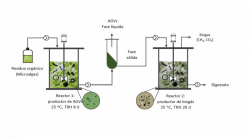 Manipulation of the Anaerobic Fermentation Process to Produce Carboxylates and Biogas