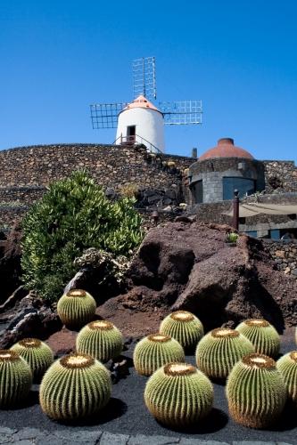 Lanzarote+Cactus+Garden%2C+last+work+of+local+artist+Cesar+Manrique
