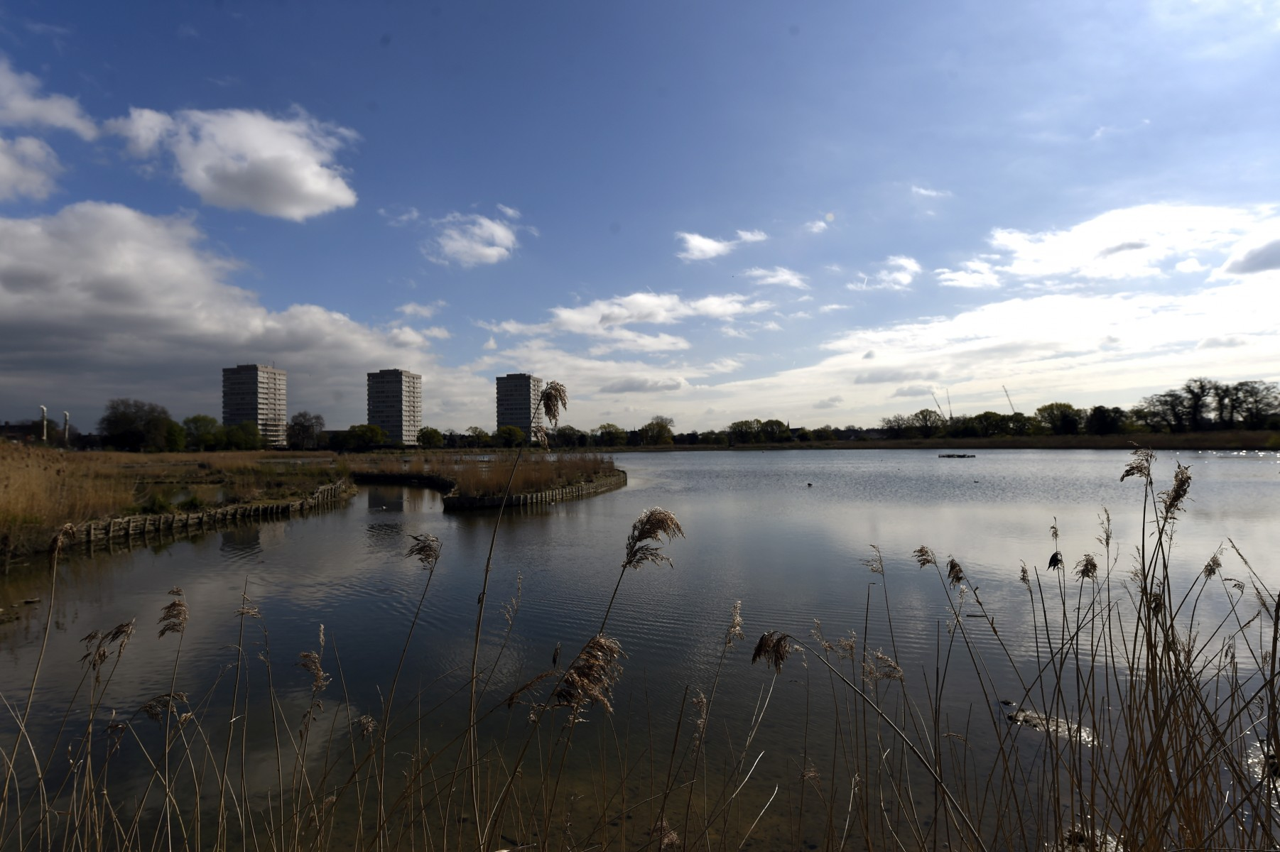 Woodberry Down estate overlooks the wetlands