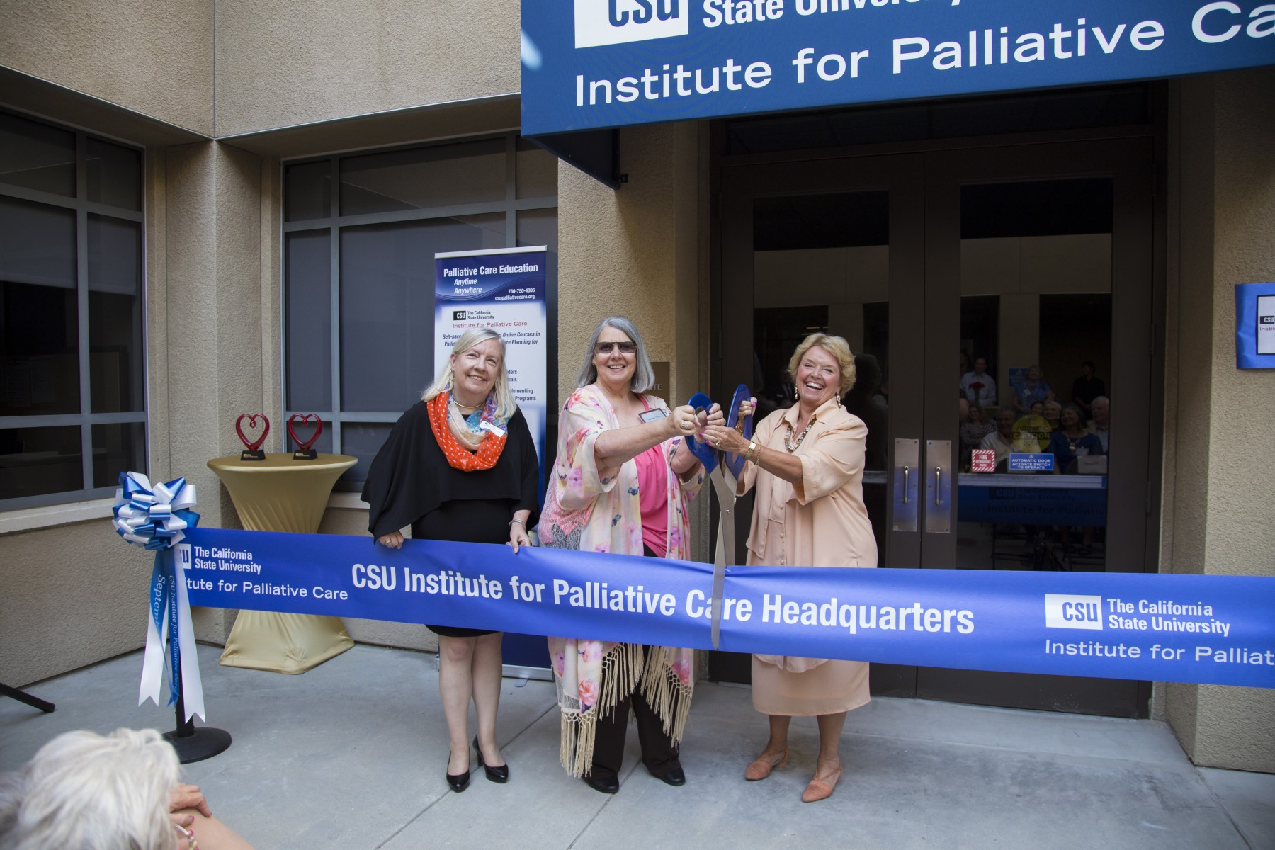 CSU Institute for Palliative Care