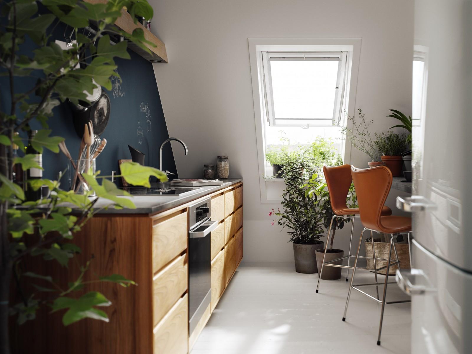 Plante Pour Salle De Bain Sombre laissez entrer la lumière et la nature pendant les mois sombres
