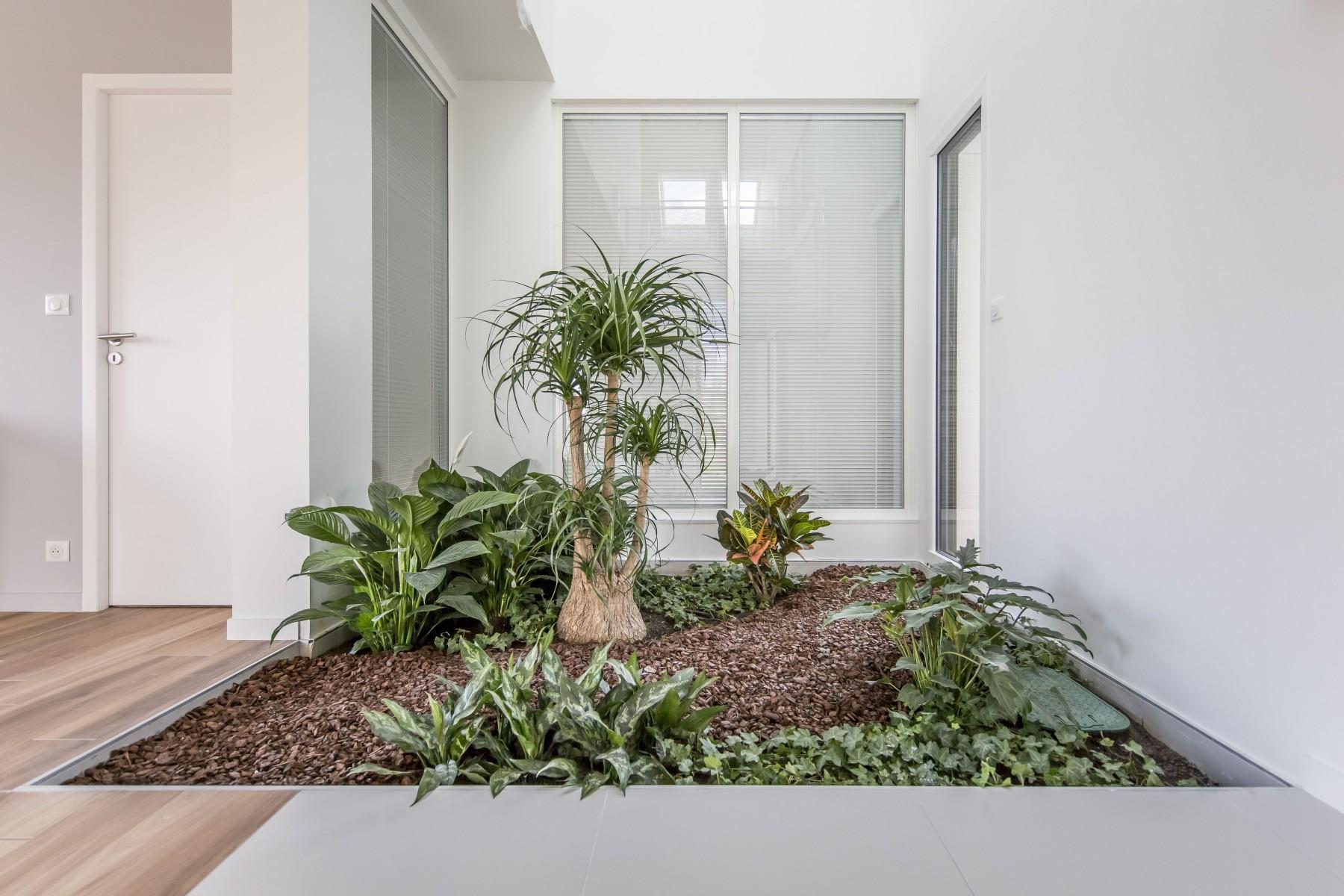 Maison Rennaise dedans la vision velux de l'habitat de demain inspire le constructeur