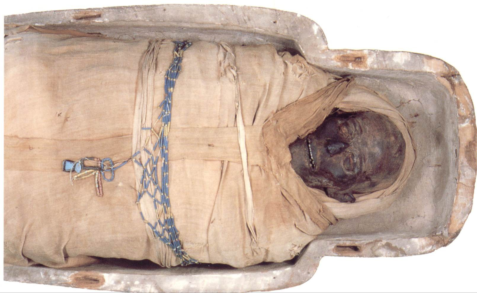 Derby Museums' Egyptian Mummy Pypy-lw