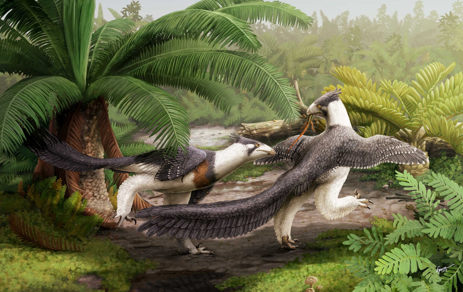 Hesperornithoides_Illustration_(c)_Gabriel_Ugueto[1]