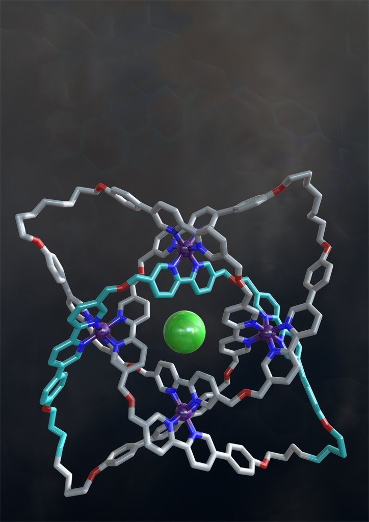 Structure of the molecular knot with eight crossings