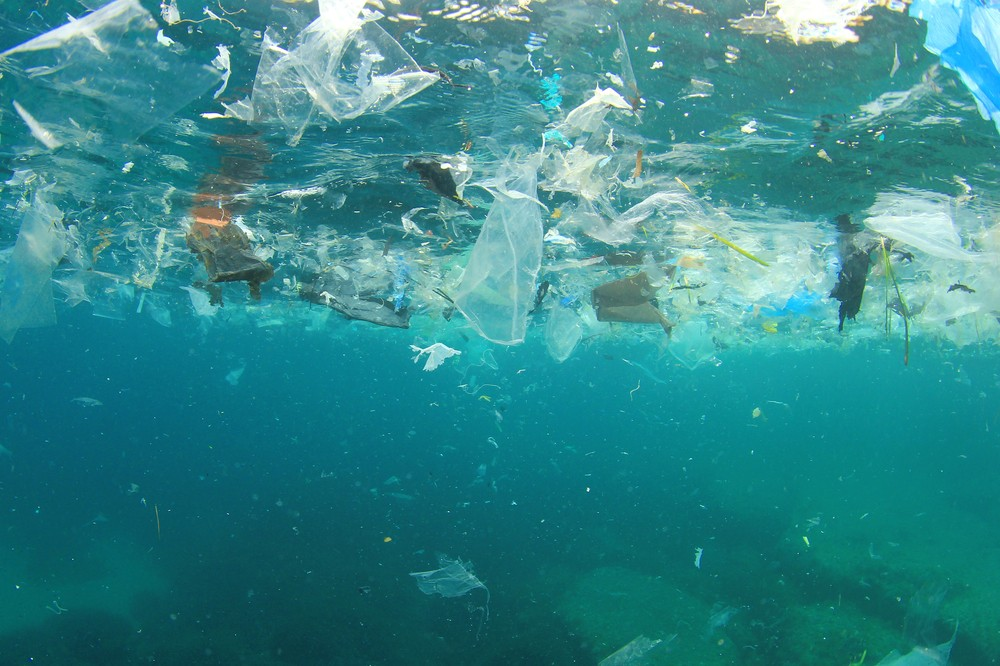 stock-photo-plastic-rubbish-pollution-in-ocean-environment-427946419.jpg
