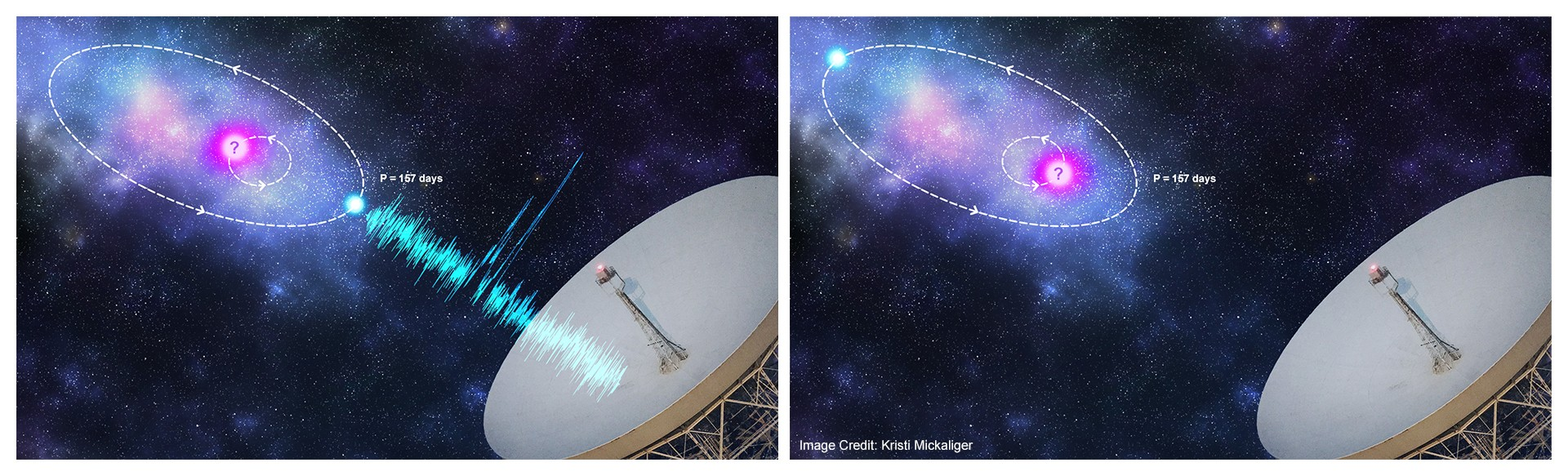 "Credit: Kristi Mickaliger ""Artist's impression of an orbital modulation model where the FRB progenitor (blue) is in an orbit with a companion astrophysical object (pink)."