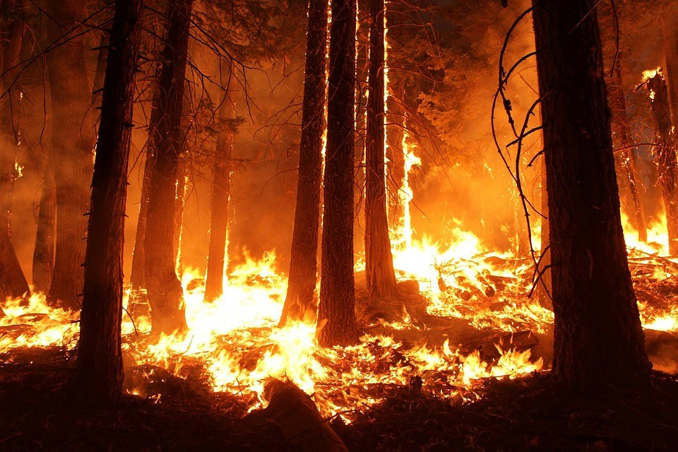 3ac2f9b9d UK wildfires  prevention is more than a fire service issue