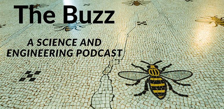 The-Buzz-cropped