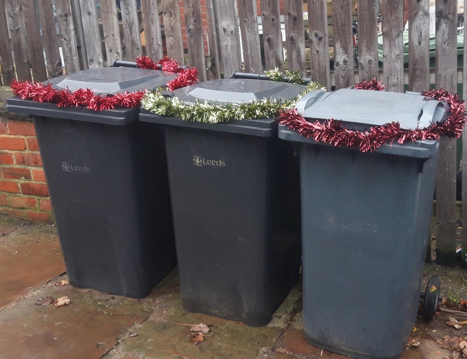 20191101_black bins w tinsel 1