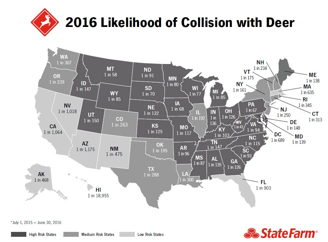 Deer Collision Map