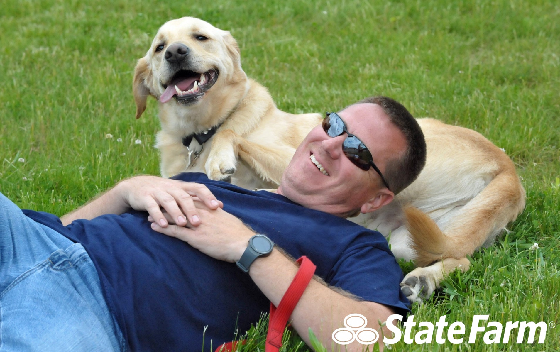 Being a responsible pet owner not only keeps your pet happy, but it also keeps people safer.