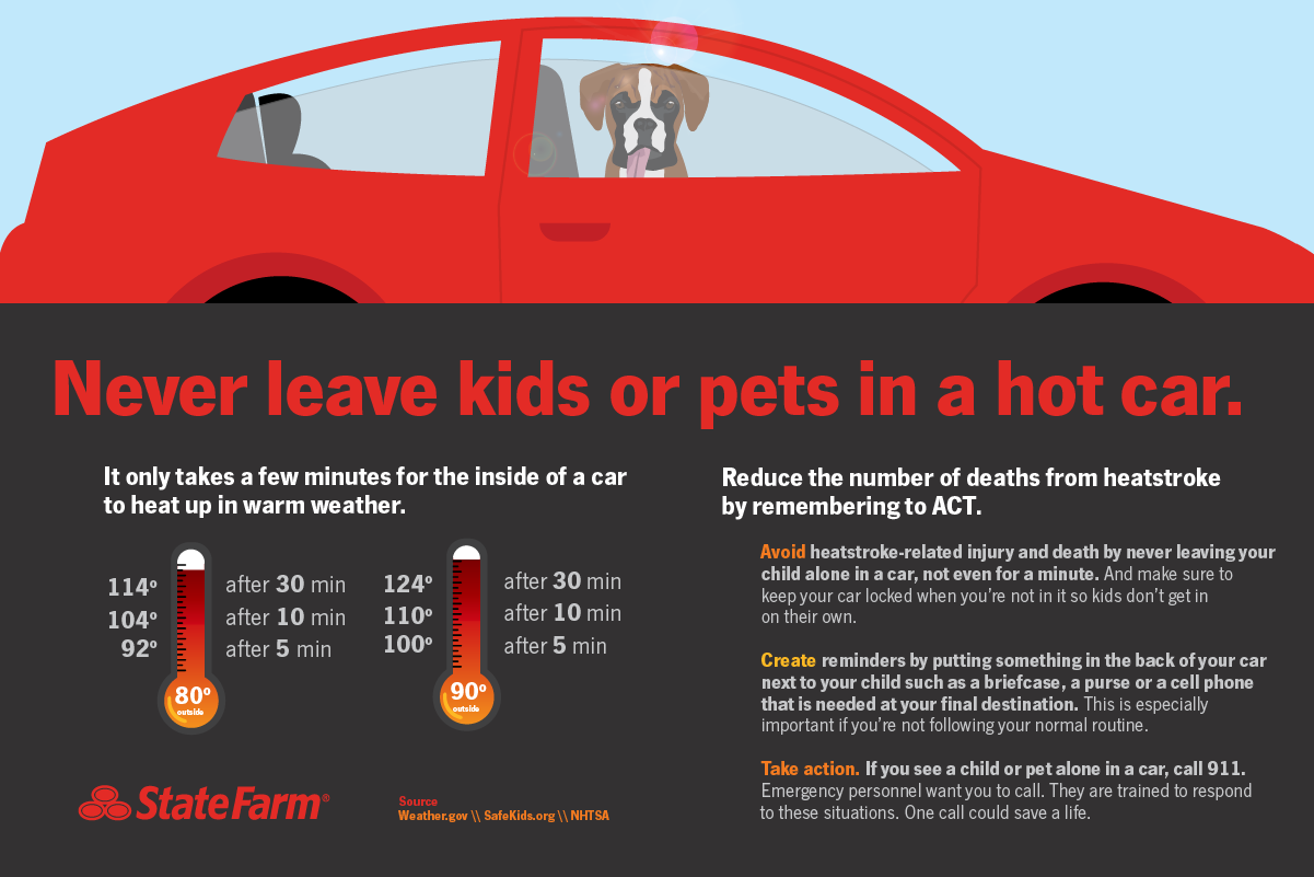 Never Leave Kids or Pets in Hot Car