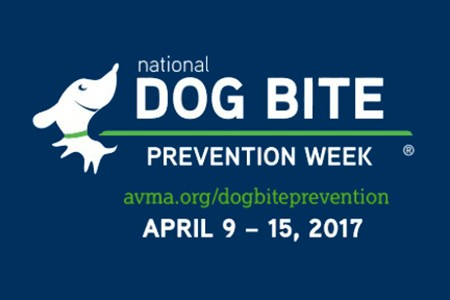 dog-bite-prevention