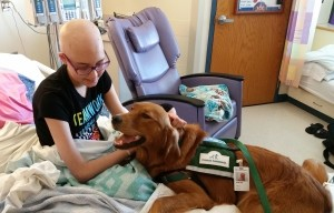 Resident Therapy Dogs