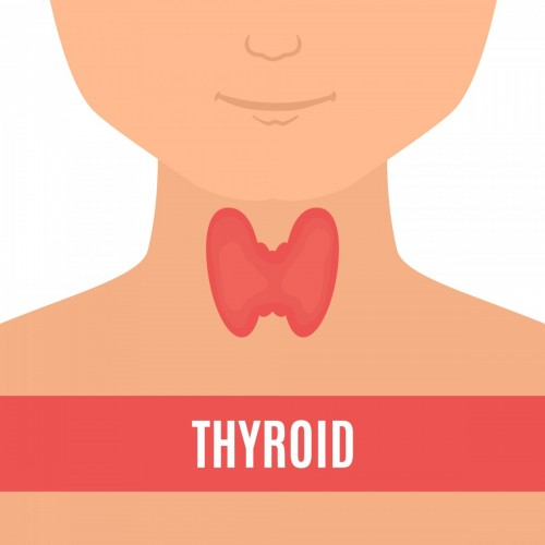 Thyroid Disease In Kids Symptoms Diagnosis And Treatment