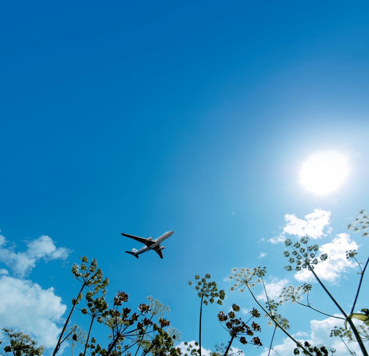 Resultado de imagen para KLM skynrg