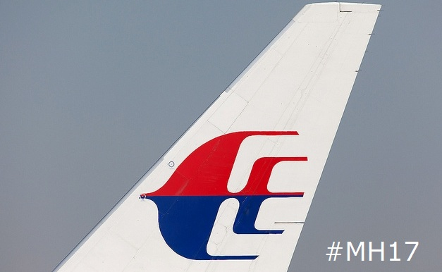 Malaysian Airlines Tail