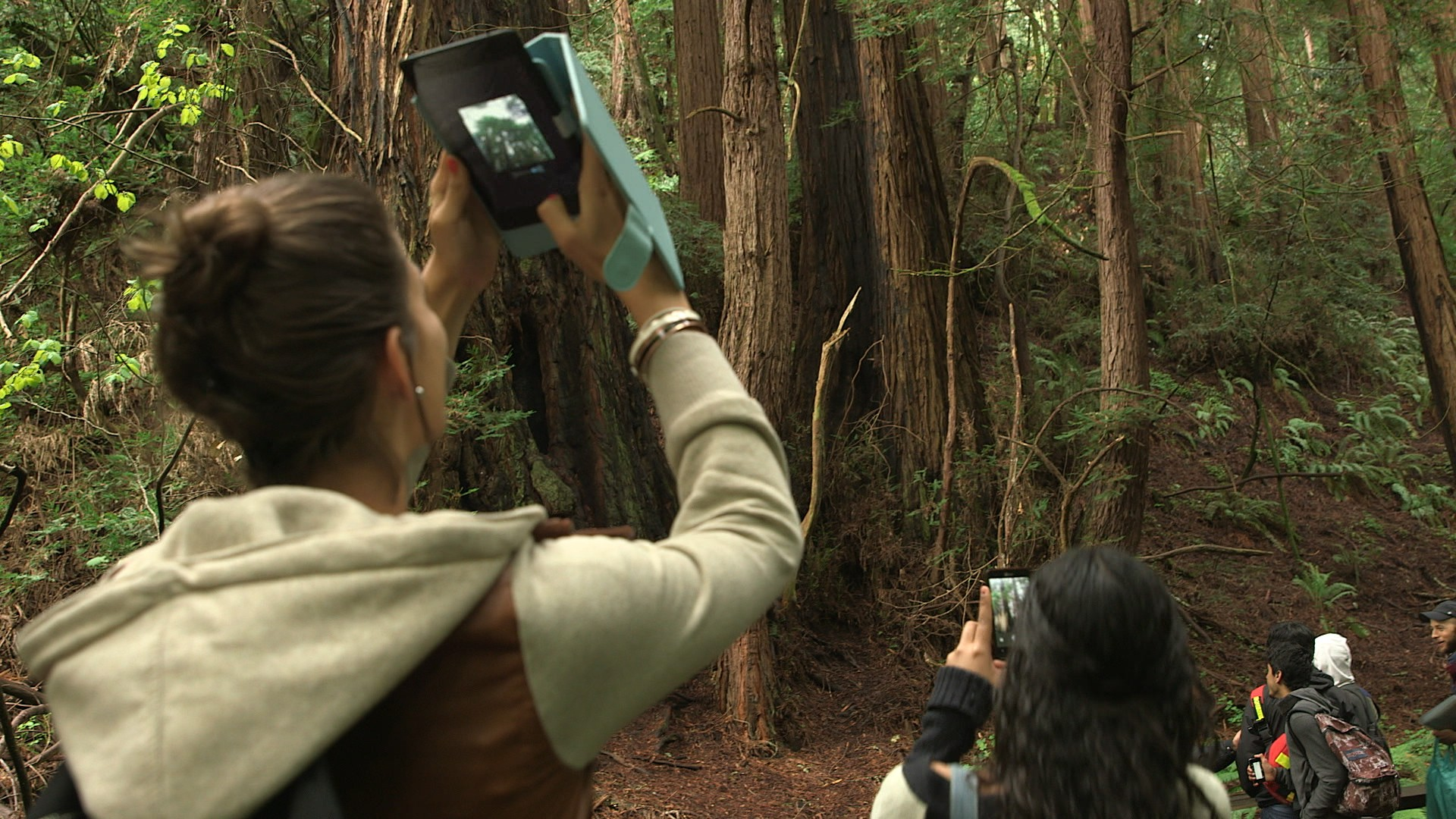 Students use cameras, phones, and tablets to capture their experience in Muir Woods National Monument.