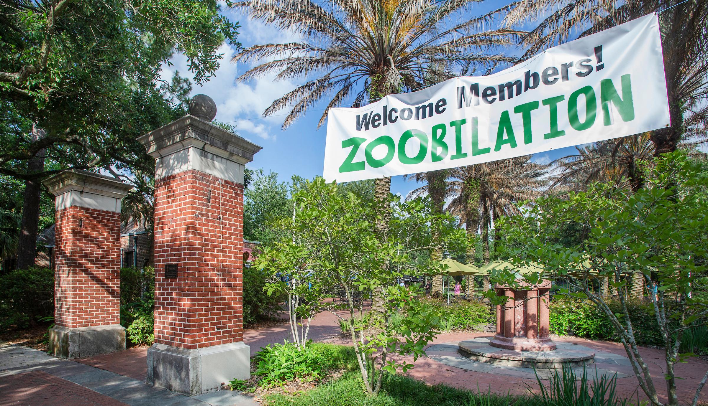 ZOObilation Member-Only Event Returns to Audubon Zoo