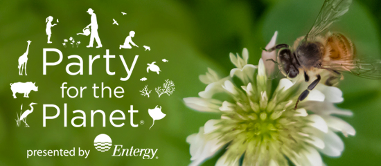 Audubon Nature Institute Virtually Celebrates Party for the Planet Presented by Entergy