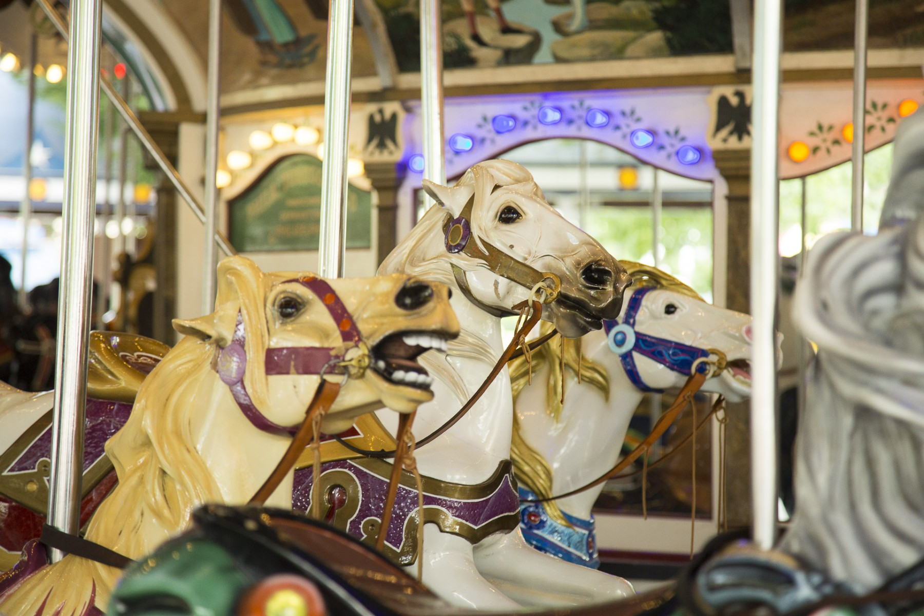 Carrousel Horse Closed Mouth