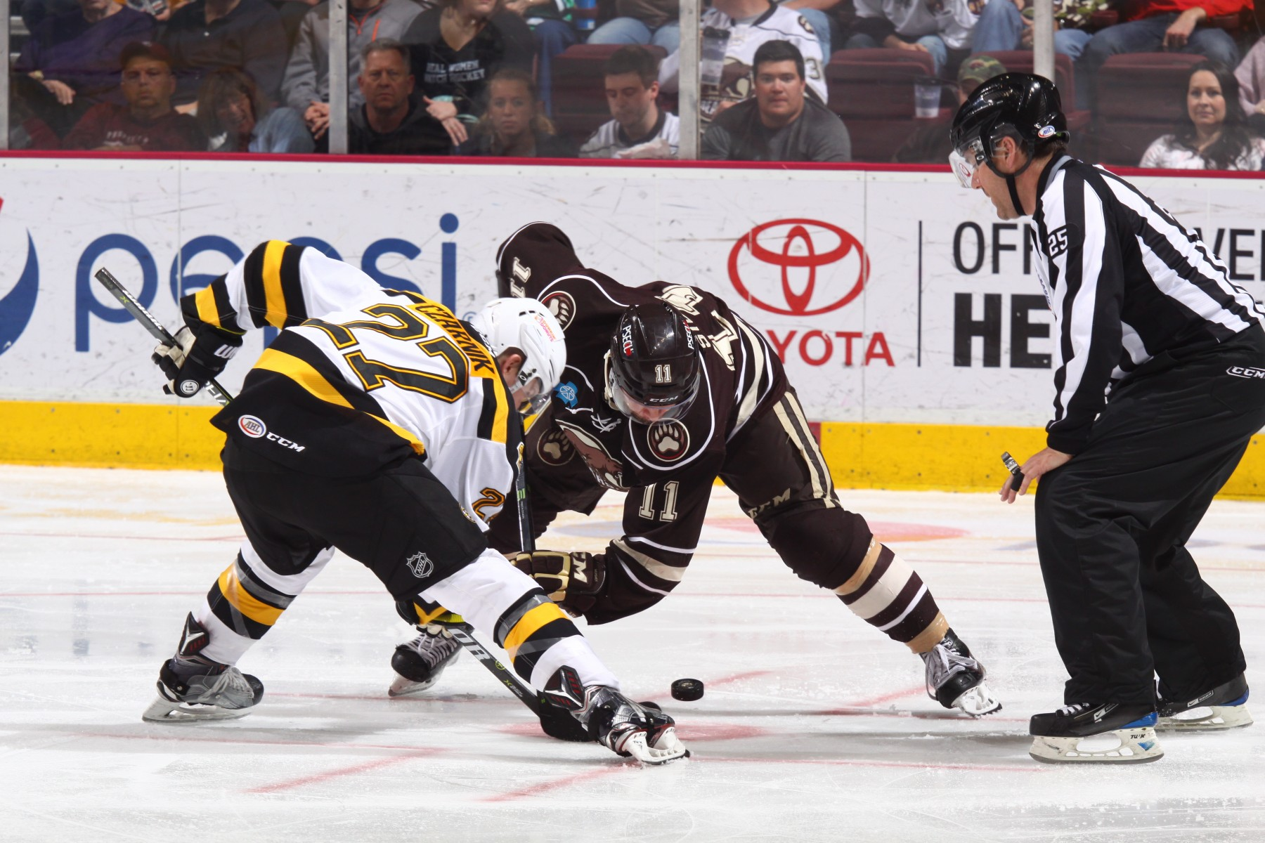 Hershey Bears take on the Providence Bruins in the second round of playoffs.
