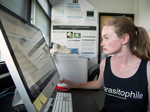 Student gets the bug for studying parasites