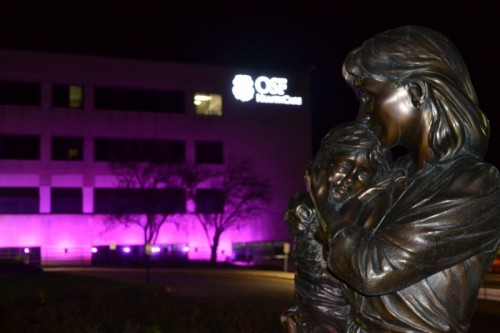 Shining a (Pink) Spotlight on Breast Cancer (PHOTOS)