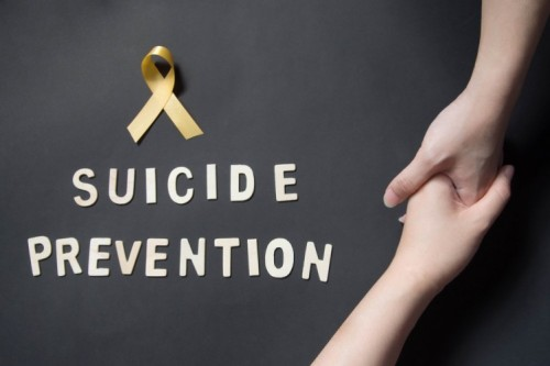 Western Illinois Community Leaders Tackle Suicide Prevention