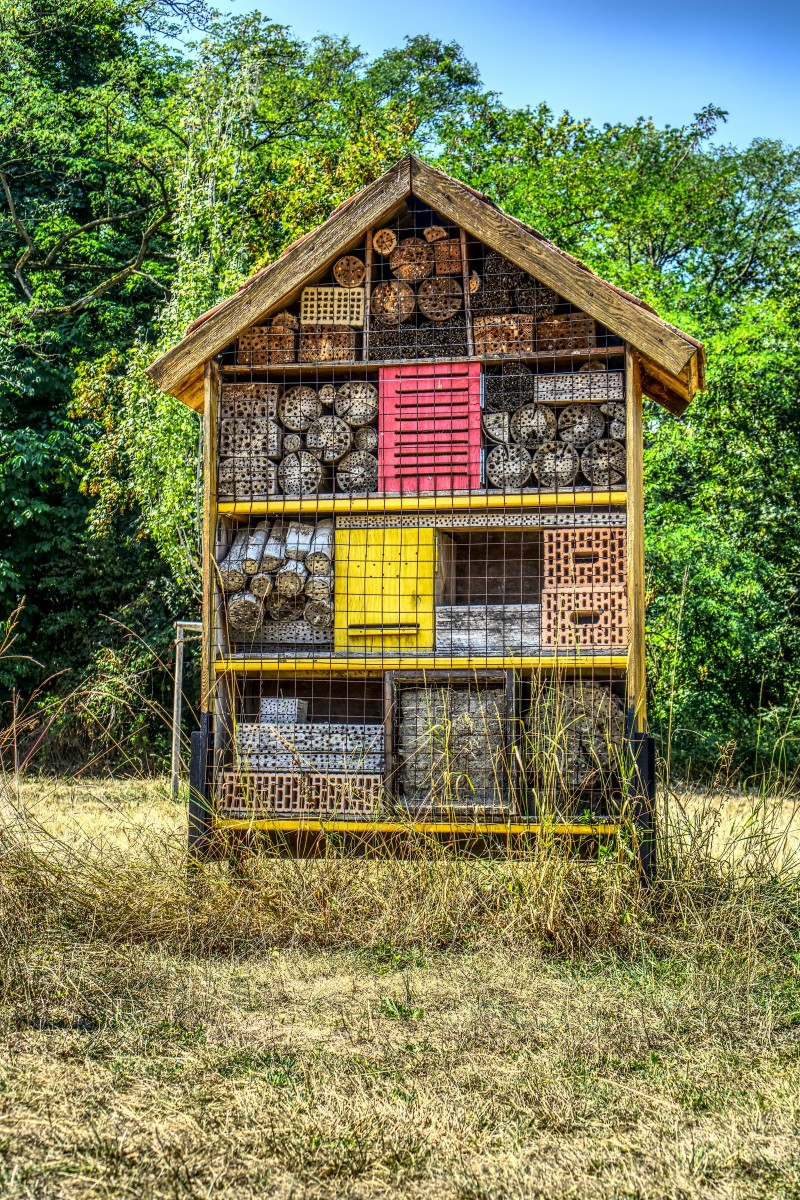 insect-hotel-3600452