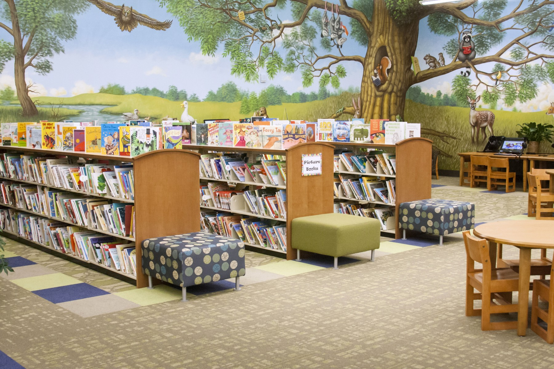 Piedmont Regional Library System