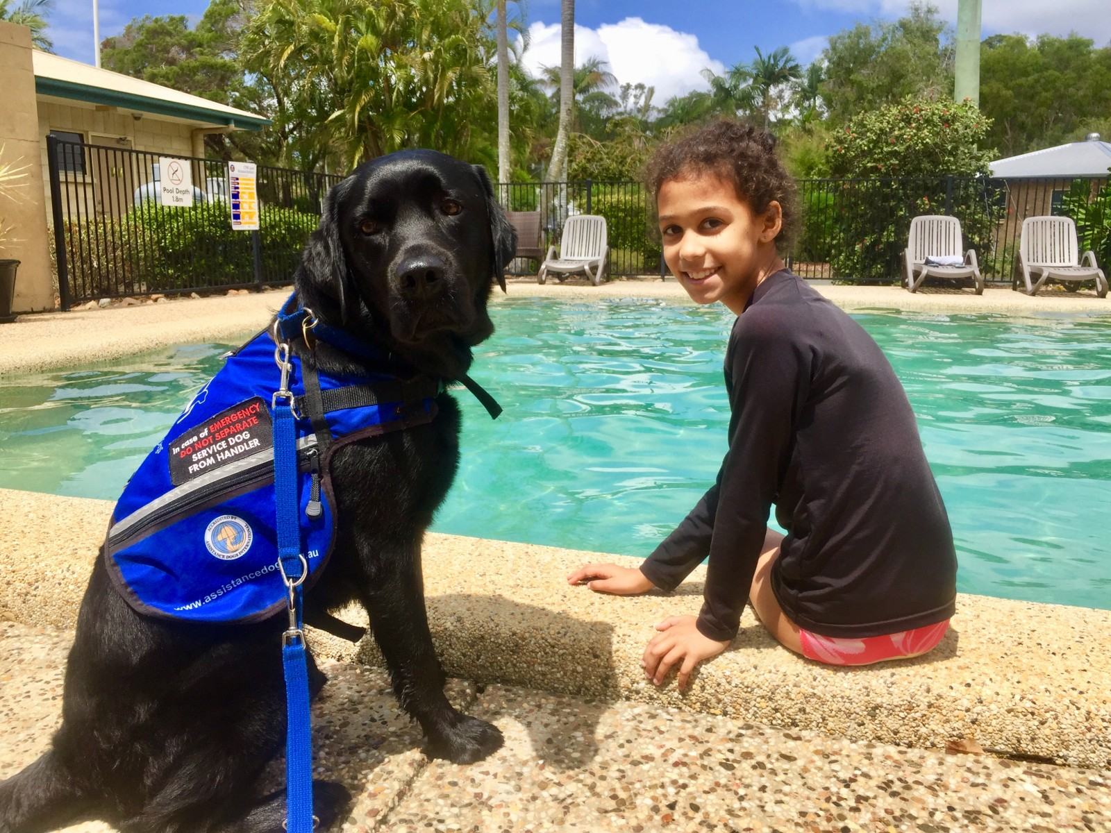 Amigo the Autism Service Dog and Armani