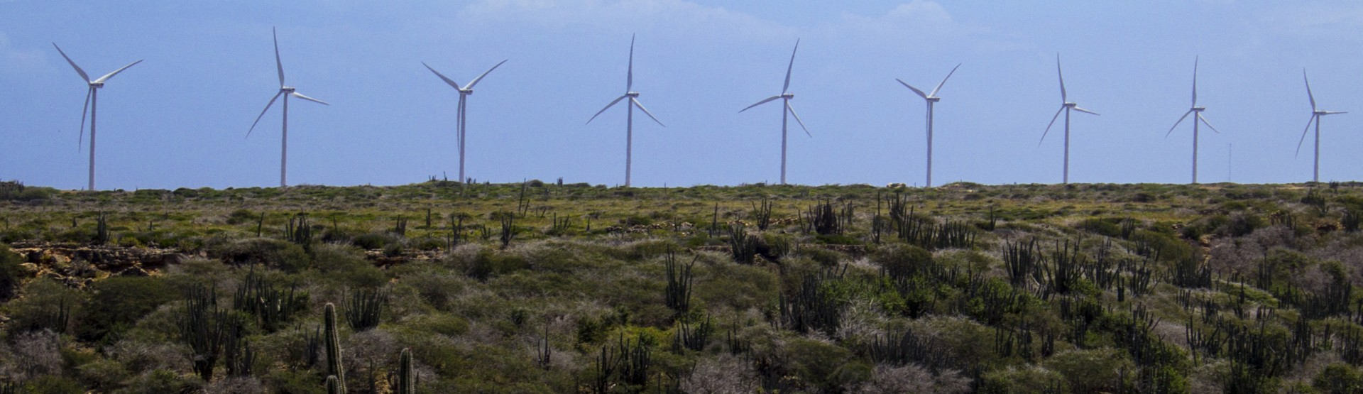 Windmill_Farm_Aruba_2560x740