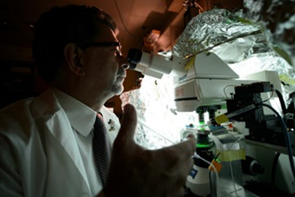 Jack Jhamandas working with a microscope in a University of Alberta lab