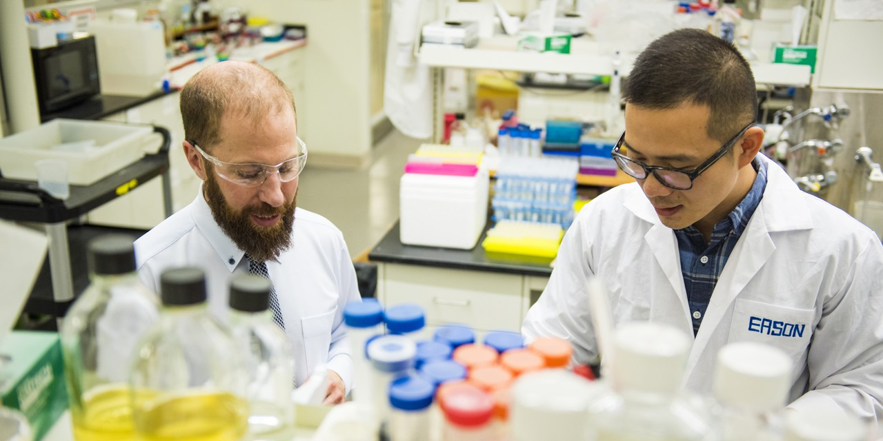Robert Campbell (left), professor of chemistry, builds new tools for neuroscientists in his UAlberta lab.