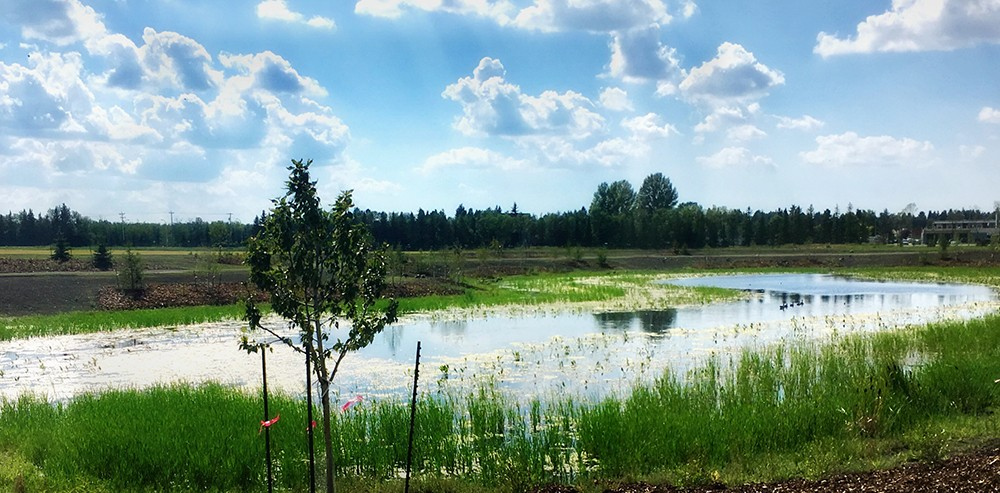 Evergreen Pond, a legacy project to complement a year of activities celebrating Canada 150, opens Sunday, Sept. 24.