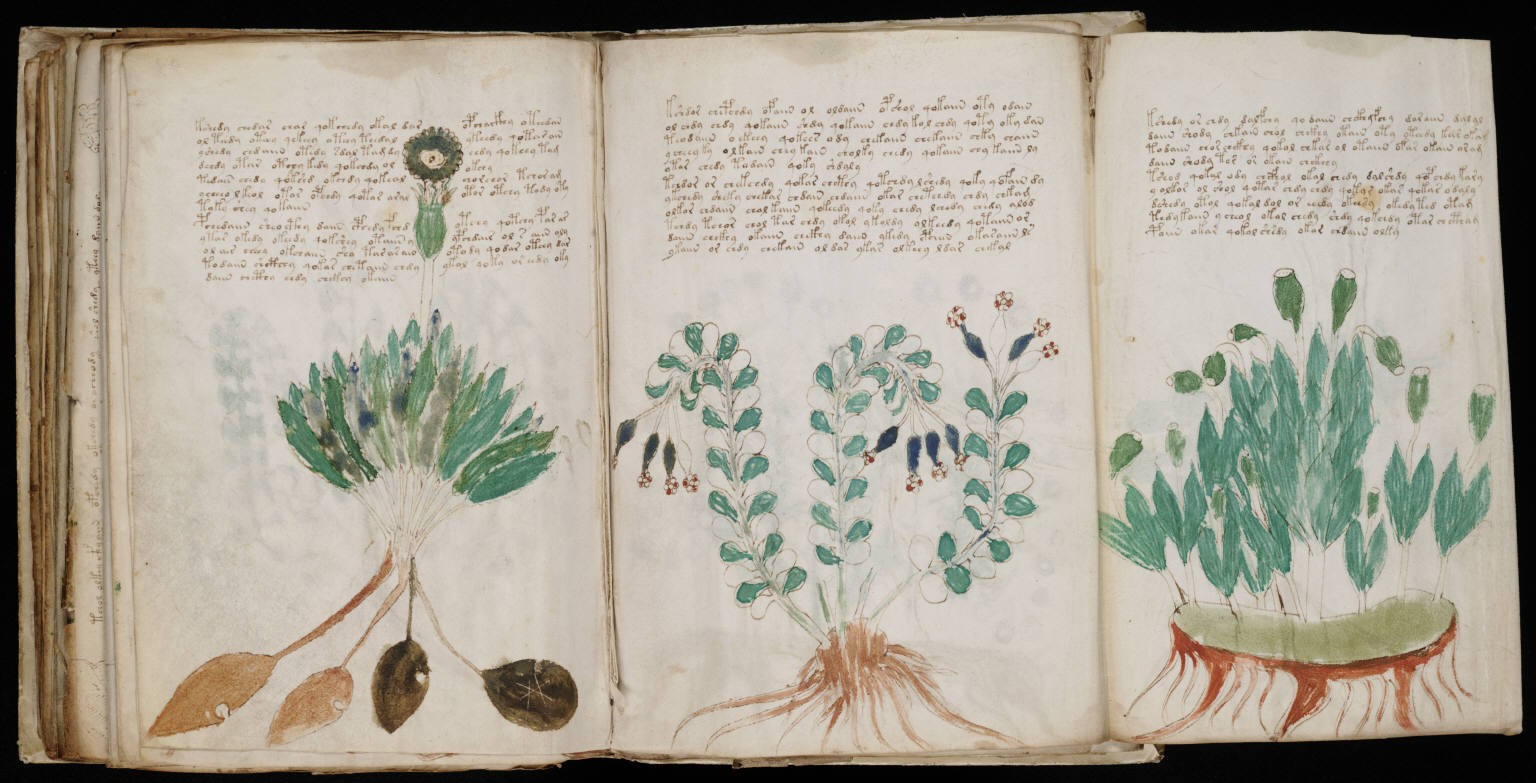 UAlberta researchers are using artificial intelligence to decipher the text in the 15th-century Voynich manuscript, whose meaning has eluded historians and cryptographers since it was discovered in the 19th century. (Photo: Yale Library)
